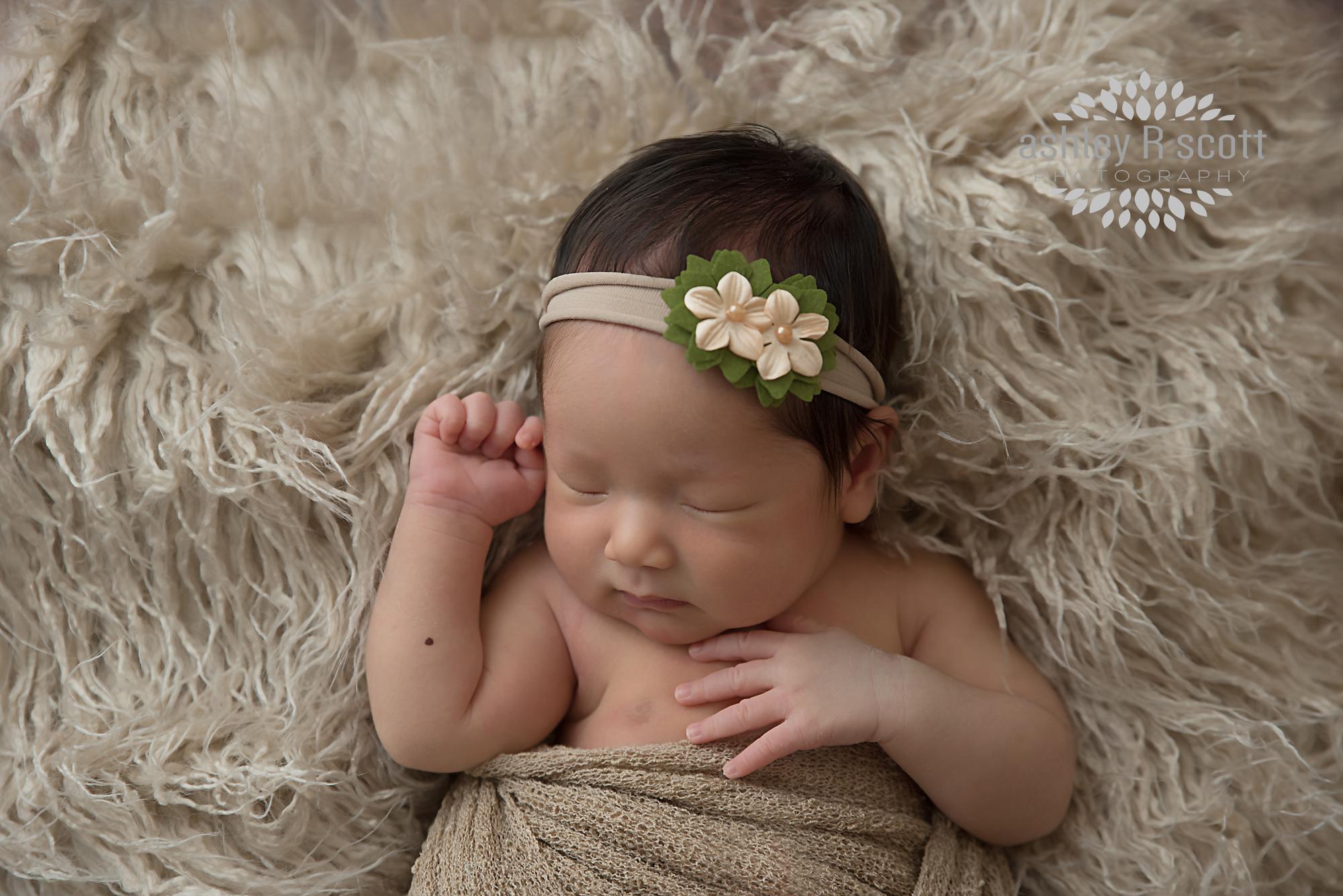 Newborn photographer michigan newborn session ashley scott photography